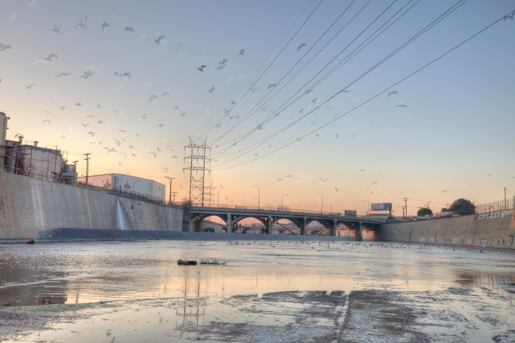 Birds Above The LA River - Inside The Los Angeles River on ...