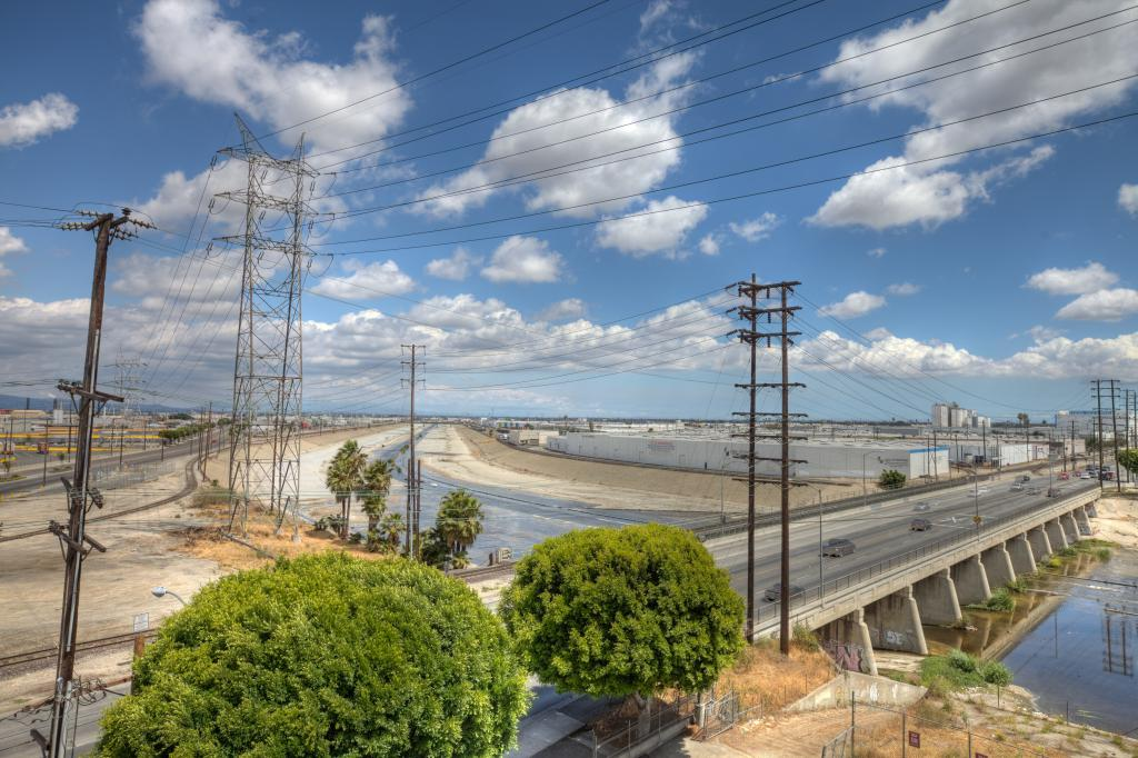 LA River and Trees