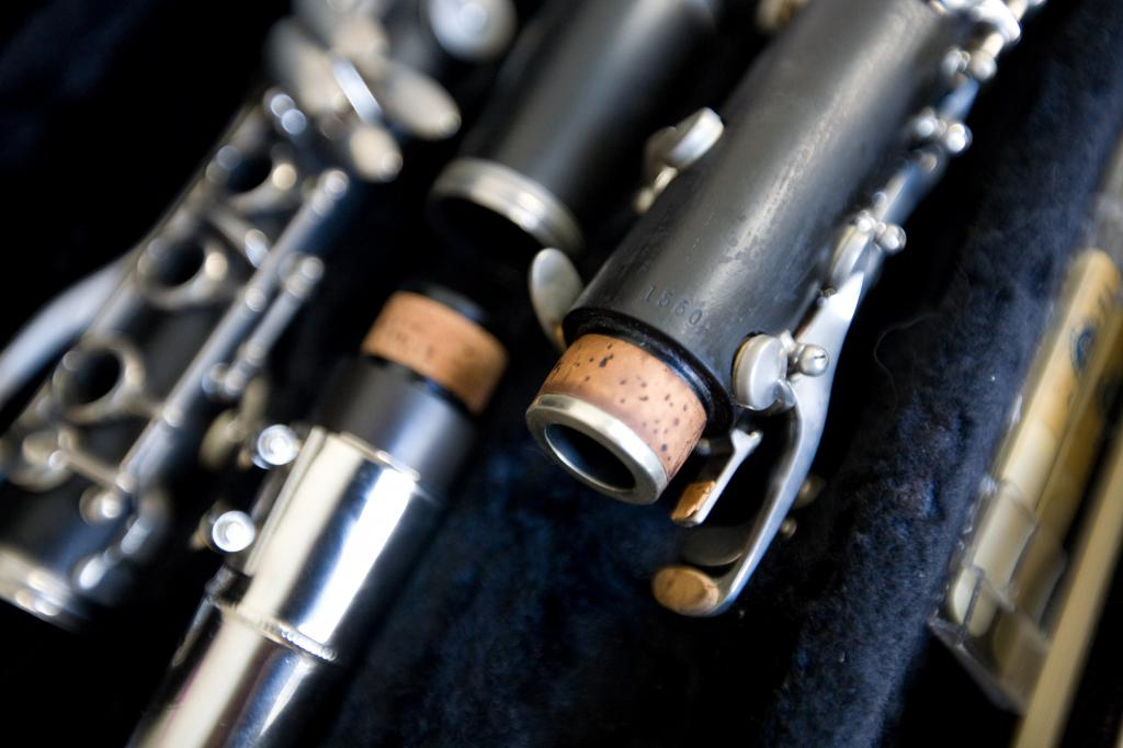 Selmer CL 200 Wood Clarinet