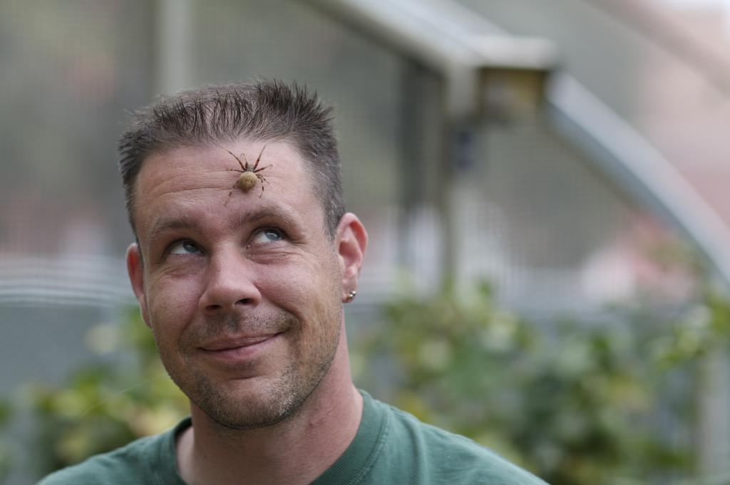 Brent The Bug Guy Karner