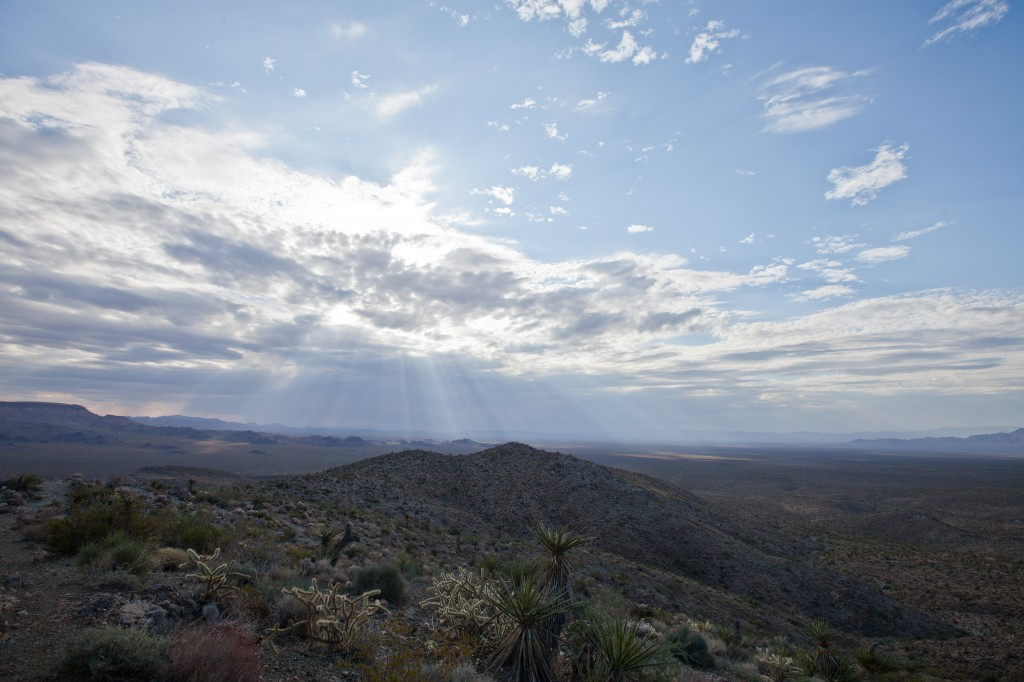 Sunbeams Over the Mojave