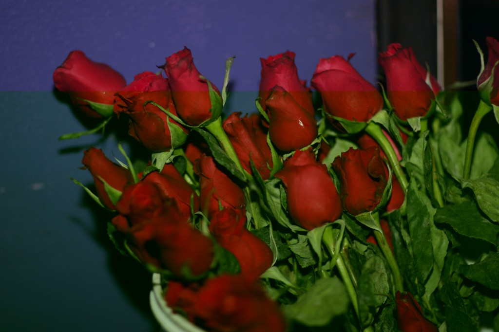 roses for the ladies